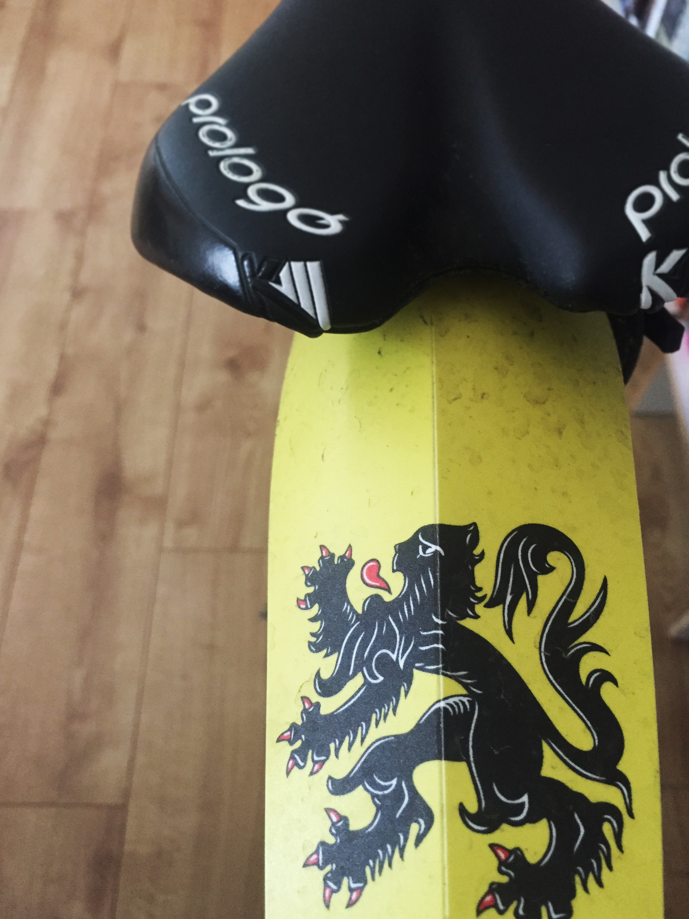 Der Flandrische Löwe: schützt auch nach 266 km den Po noch vor Nässe